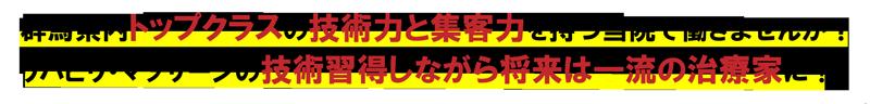 埼玉県内トップクラスの技術力と集客力を持つ当院で働きませんか? リハビリ・マッサージの技術習得しながら将来は一流の治療家に!